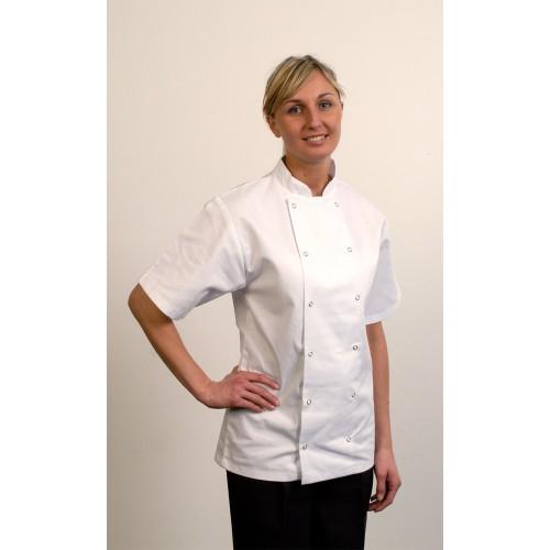 Danny Short Sleeve Chefs Jacket